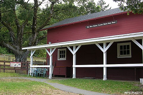 The Morgan Horse Ranch Barn. A red barn with white trim with a large oak tree on the left.