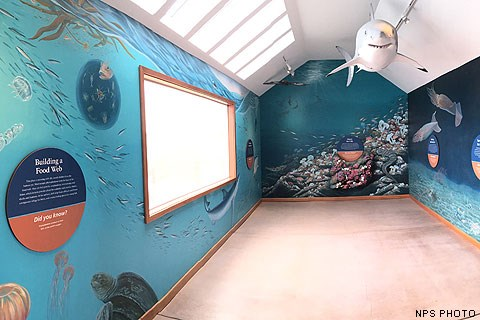 The northern wall of the Ocean Exploration Center. A model of a white shark is suspended from the ceiling. Murals depicting life below the surface of the ocean are painted on the walls. A large picture window is on the left side of the image.