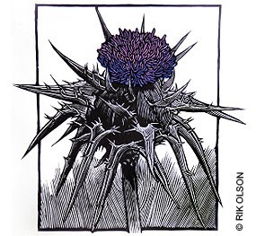 Relief print of a purple thistle. © Rik Olson.
