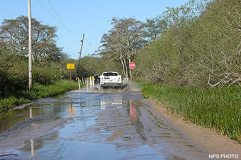 Tide, Weather, and Road Conditions – Point Reyes Winter