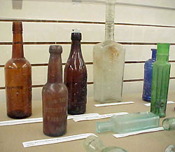 Bottles collected during Crissy Field restoration
