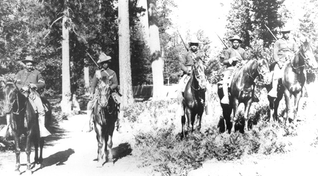 Five buffalo soldiers on horseback, three on the right side standing on brush in relatively open space and two on the left with a few trees in the background