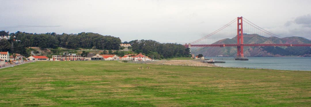 grass over crissy airfield with golden gate bridge in the background