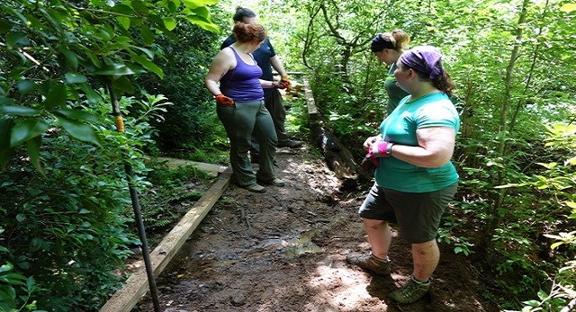 Group of male and female volunteers working on a footbridge