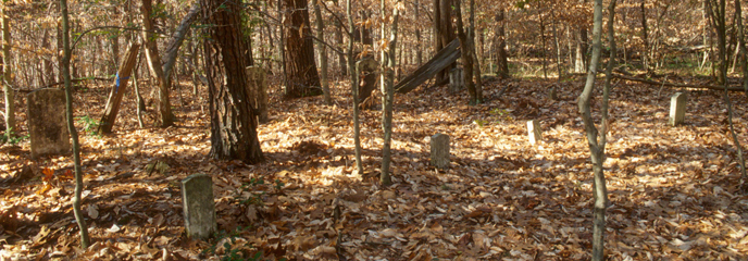 the florence cemetery in the woods