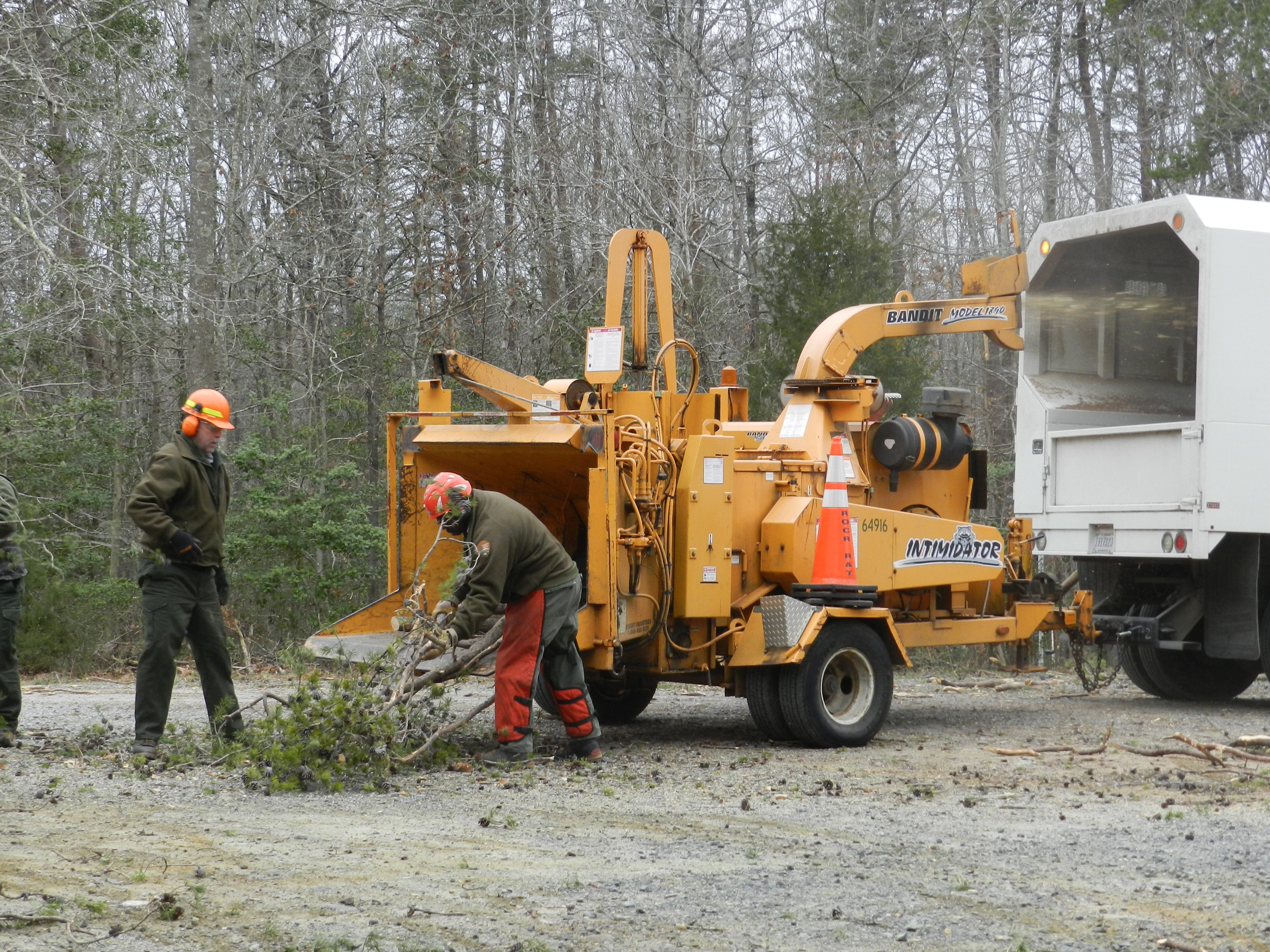 Crews continue to clear fallen and hazardous trees at Prince William Forest Park.