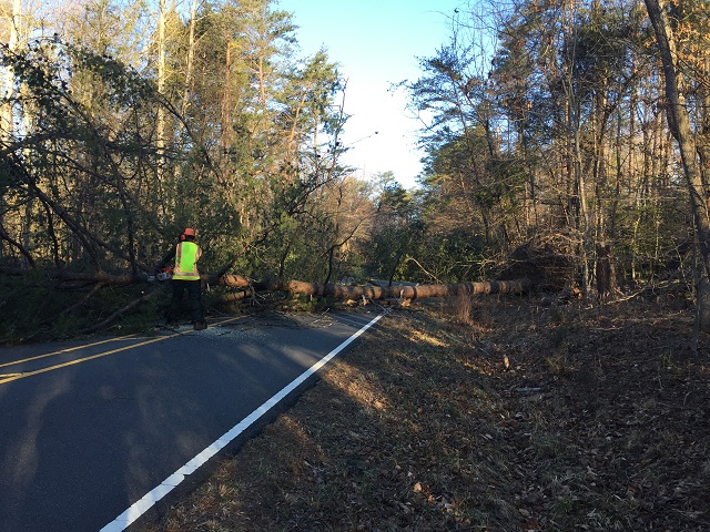 NPS tree crews are hard at work clearing fallen trees from park roads.