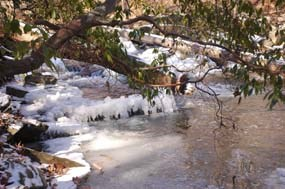 A small, frozen cascade on the South Fork Quantico Creek.