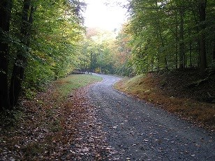 Burma Road rounding the curve in fall