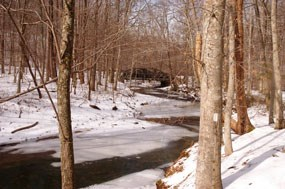 South Fork Quantico Creek and view of Scenic Drive bridge