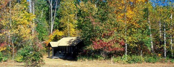 a cabin in autumn