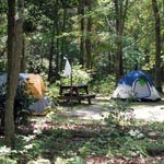 Two tents in the woods of Oak Ridge Campground