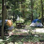 tents in campground
