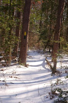 Farms To Forest Trail in the snowy winter.