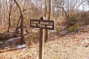 The end of Cabin Branch Pyrite Mine Trail. Quantico Creek and  a trail sign giving direction.