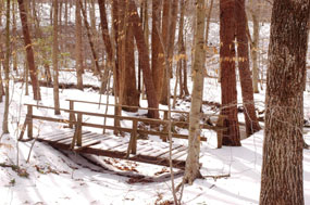 Footbridge at the end of Turkey Run Ridge Trail.