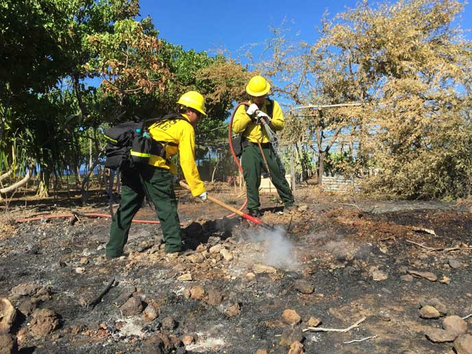 NPS firefighters extinguish hotspots at Puukohola Heiau