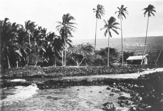 B9_NEG854_1912_PALACE GROUNDS VIEW FROM HALE O KEAWE_crop