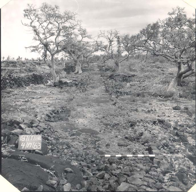 1871 Trail prior to 1960's stabilization