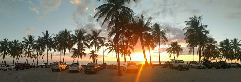 Sunset viewed from the Picnic Area through coconut trees and parked cars