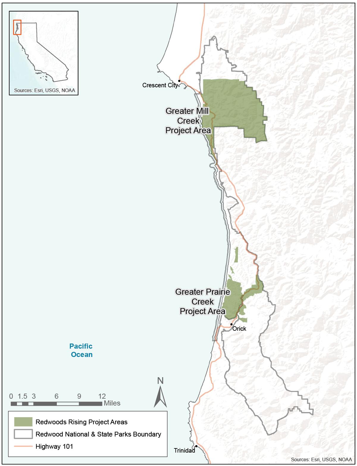 Redwoods Rising main - Redwood National and State Parks ... on redwoods river resort leggett ca, redwood park california map, redwood city map, redwoods california coastal region, redwood highway map, redwood valley map, giant sequoia tree california map, redwoods san francisco, california redwoods vacation map, redwoods humboldt county map, redwoods northern california lodging, sequoia national park california map, redwoods northern california map view, redwoods np map, redwoods campgrounds map, redwood trees california map, redwoods eureka ca, redwoods crescent city ca, humboldt redwoods state park map, redwoods in central california,