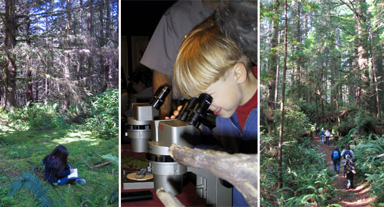 journaling, microscoping, hiking back from Mill Creek