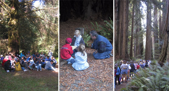 spruce classroom, create a park, nickerson ranch hike