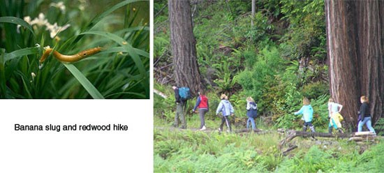 Left Image: Banana slug on grass.  Right Image: Children hiking.