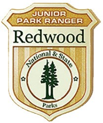 Redwood_Junior_Ranger