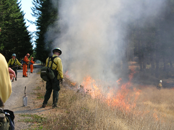 Prescribed fire at Dolason Prairie.