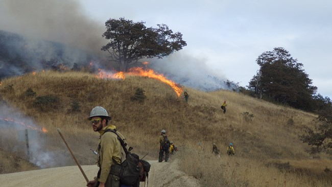 Prescribed fire crews walk a road and manage fire on a grassy hill.
