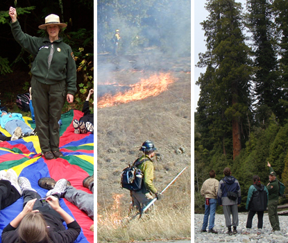 A few of the many National Park Service jobs available at Redwood National and State Parks.