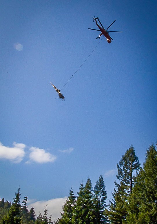 A helicopter carries a large tree trunk over the forest.