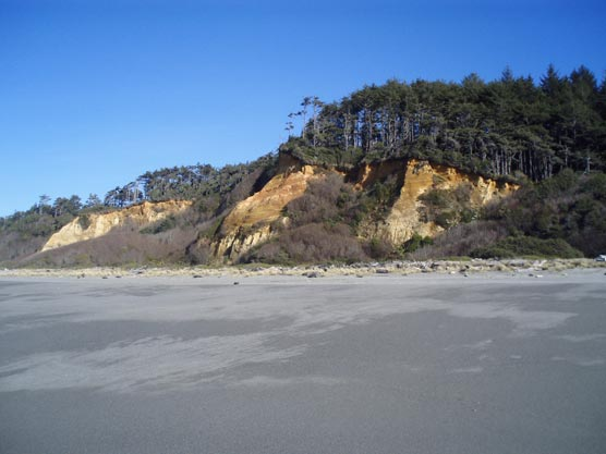 Gold Bluffs Beach