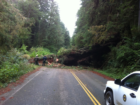 View of road block from the fall. Crews believe that the road has sustained some damage.