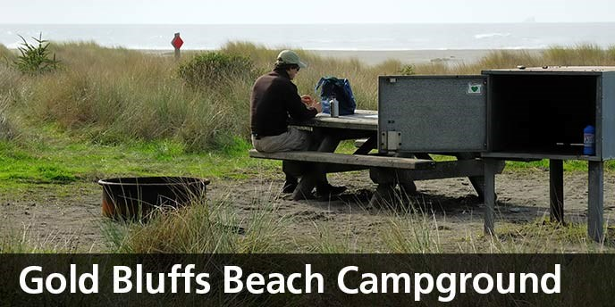 Gold_Bluffs_Beach_Campground