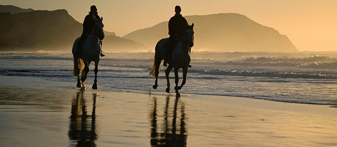 Two horse back riders on the beach at sunset.