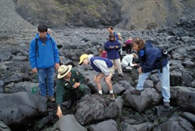 A group of six people walk among rocks and tide-pools with a park ranger on a ranger-led program.