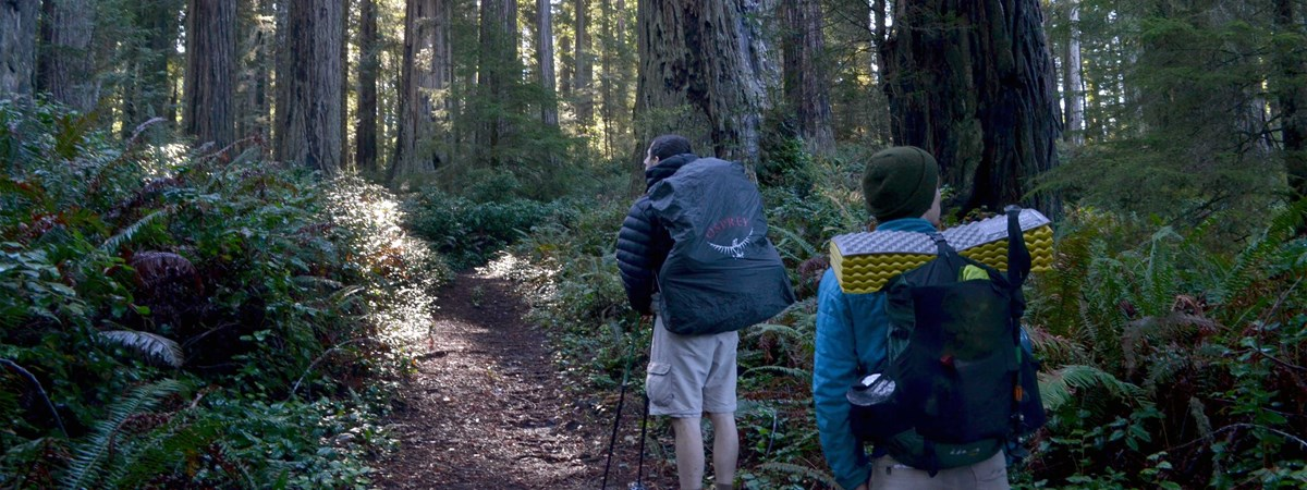 Two backcountry hikers in the redwoods