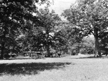 Early 20th century photo of cannon along Grant's last line at Shiloh