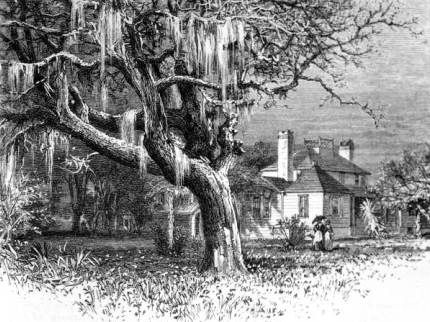 Drawing of Kingsley Plantation, c. 1878