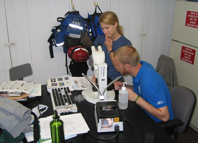 Two SCA interns working with a microscope