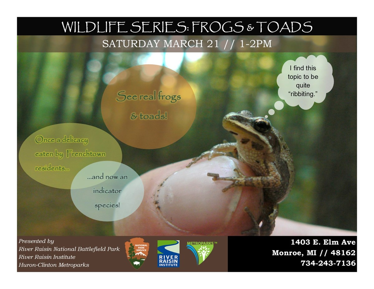 Wildlife Series flyer