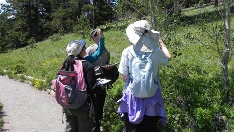 Become a citizen scientist today and collect data while walking around Lily Lake.