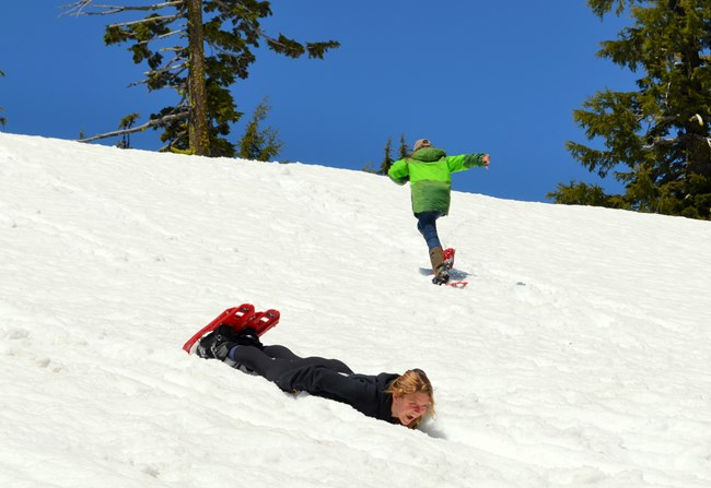 Students explore the sensation of snowmelt runoff by sliding down Ranger Hill during a field trip.