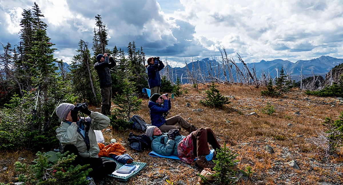 Citizen scientists, sitting in an alpine meadow, scan the sky with binoculars.