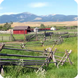Wooden cattle fences stand in a pasture with a red bard in background.