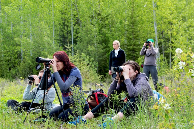 Students in a forest clearing sit in the brush looking through binoculars and scopes.