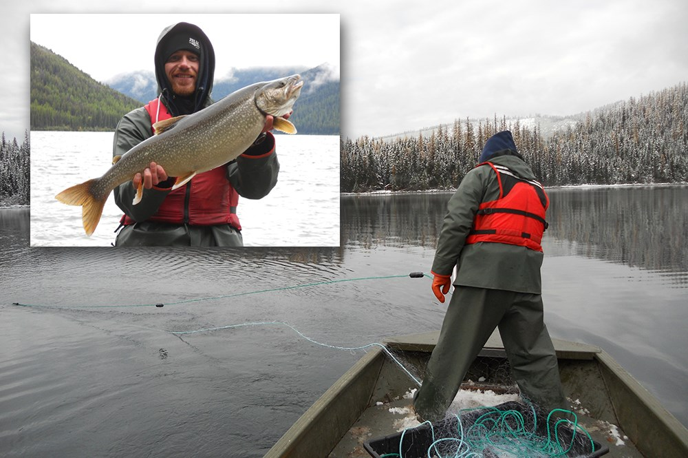 Researcher standing on boat slings net into lake; inset photo shows man holding large lake trout.