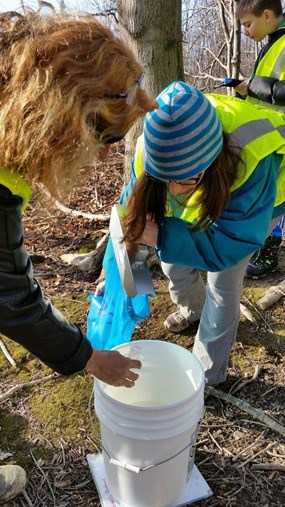 Two women collect a sap sample while a young citizen scientist determines the sap's sugar content.